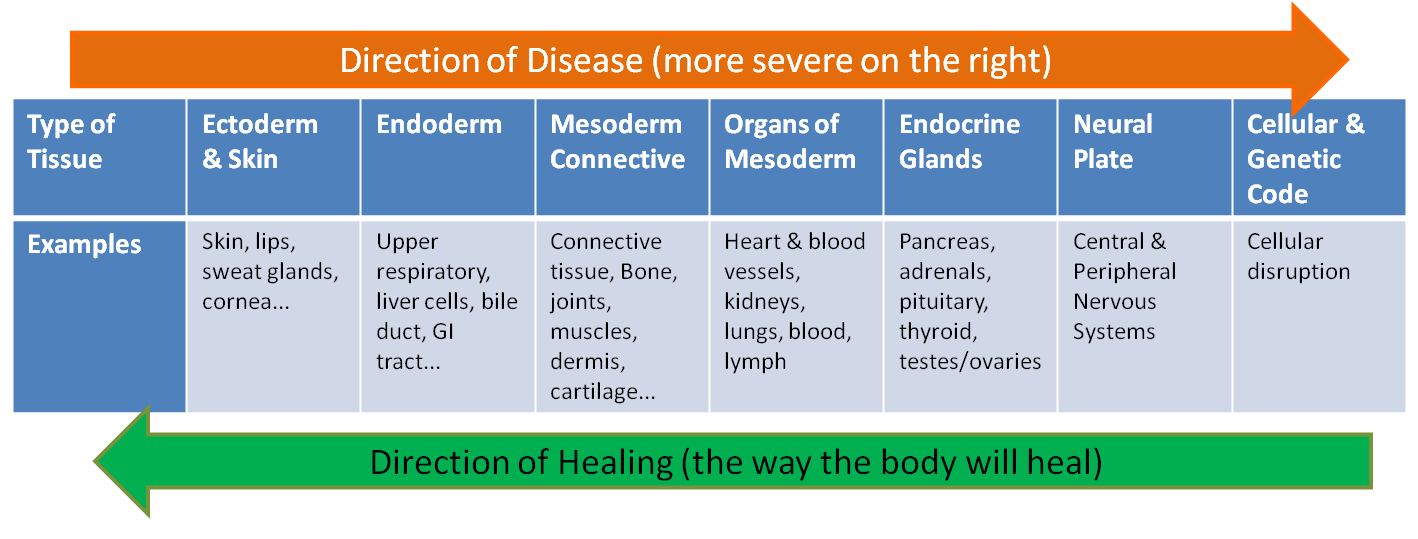 Direction of Disease in Holistic Medicine
